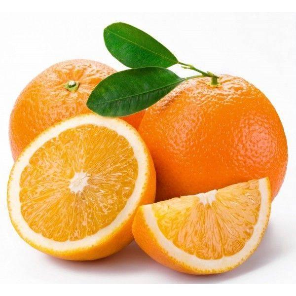 Smatrflex Velvet Pomeranč 1,4kg - Smartflex Velvet